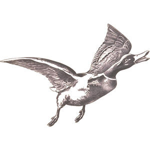 Jakt-tapet Flygande And